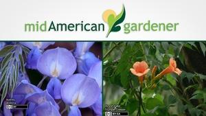 Mid-American Gardener with Sandy Mason January 25, 2018