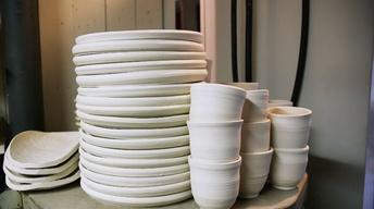 The Plate Collective
