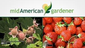 Mid-American Gardener with Sandy Mason February 8, 2018