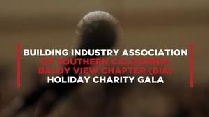 The BIA Holiday Charity Gala