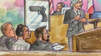 Flynn Guilty Plea, Reza Aslan, Kathryn Steinle Verdict