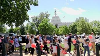 Strolling Thunder: Rally for Babies in Washington, DC