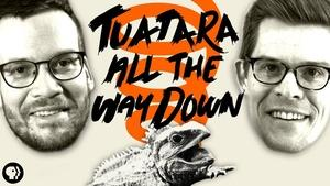 S5 Ep14: Tuatara All the Way Down