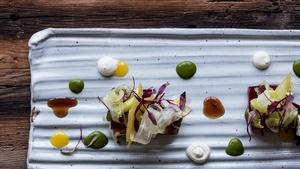 Clayton Chapman, Cranberry Fluff Salad