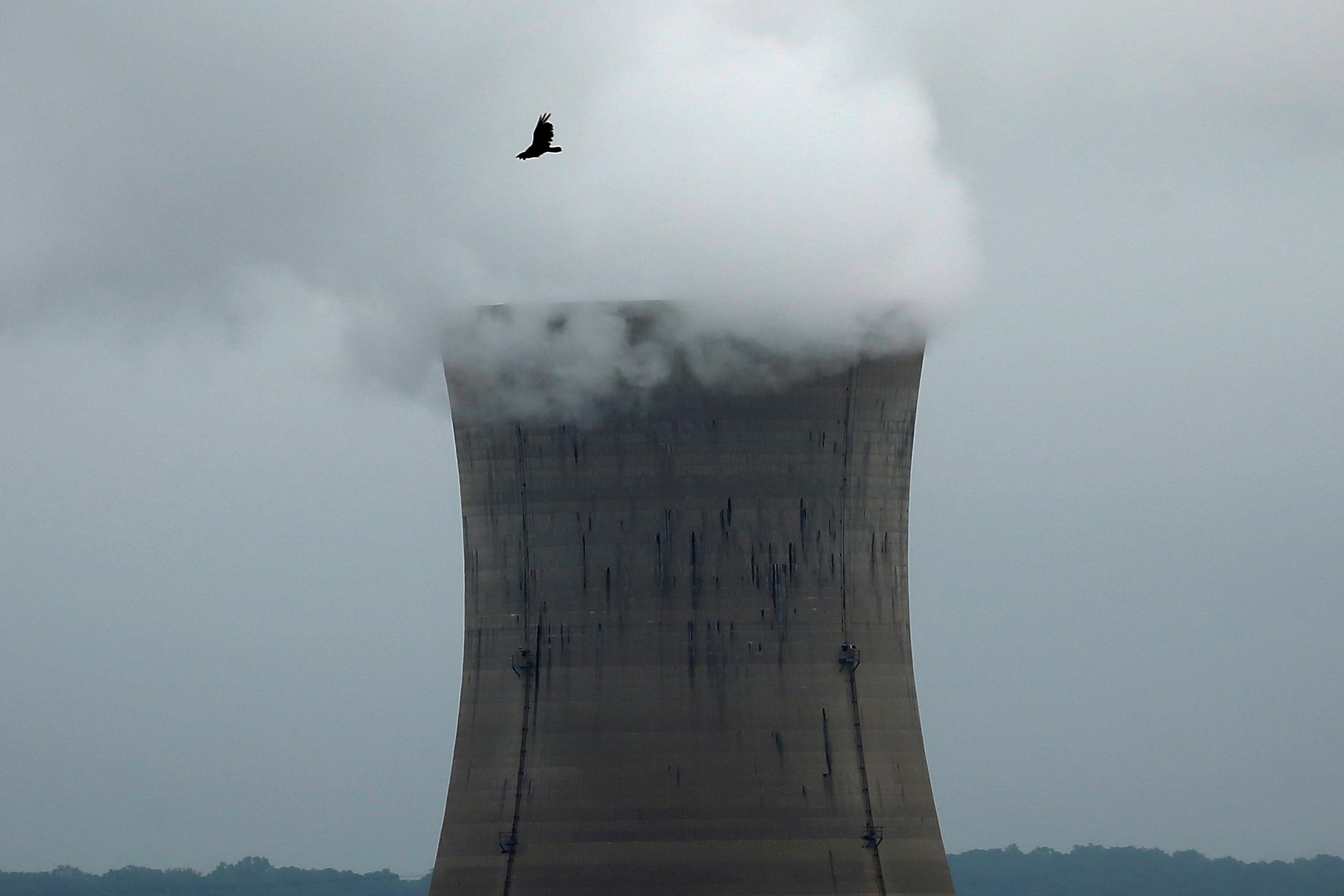 Should states rely on nuclear to combat climate change?