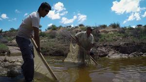 Pecos Pupfish, Fishing Educator & D-Day Remembered