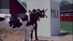 River of Milk