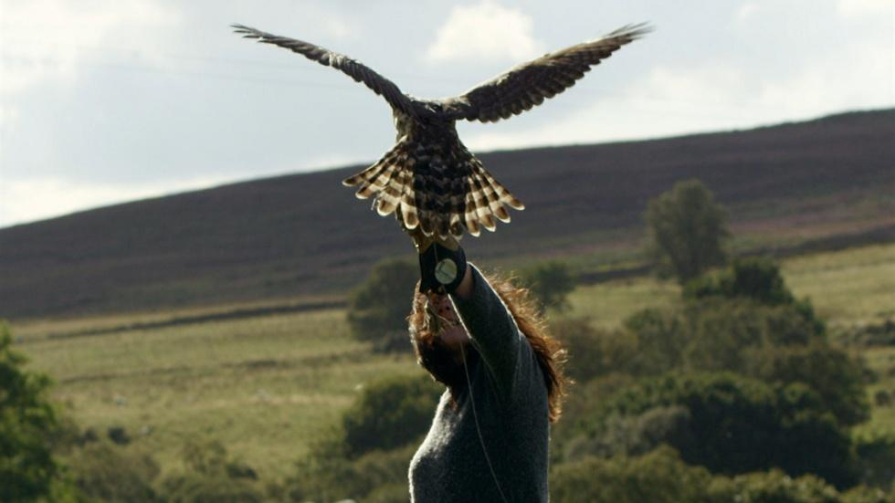 Falconer Helen Macdonald Takes Goshawk Out for Test Flight image