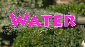 Water Episode