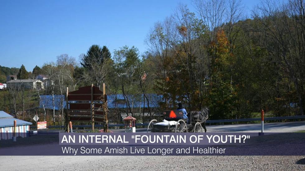 Does This Amish Family Have an Internal 'Fountain of Youth'? image