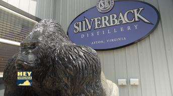 Silverback Distillery