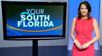 Your South Florida - Promo