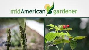 Mid-American Gardener with Dianne Noland August 17, 2017