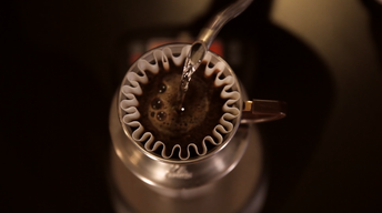 The Perfect Cup of Coffee | Food Science