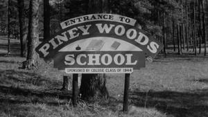 Piney Woods School