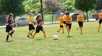 Triboro Soccer