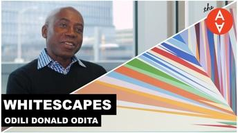 S3 Ep29: Whitescapes - Odili Donald Odita | The Art Assignme
