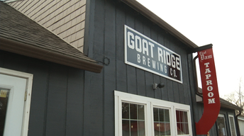 Regional Brewery Trends