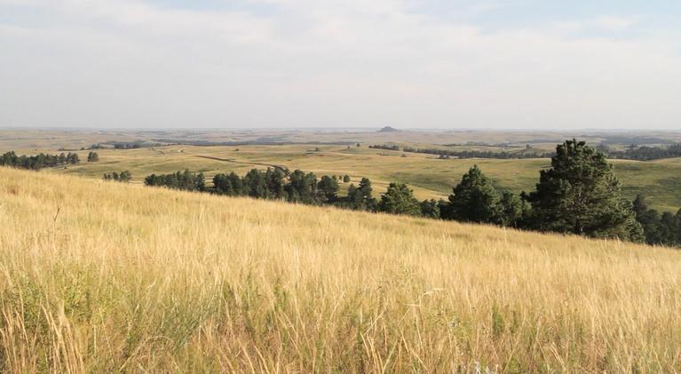 Across the Creek: Recovering Lakota Culture