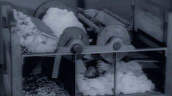 Classroom | The Cotton Gin