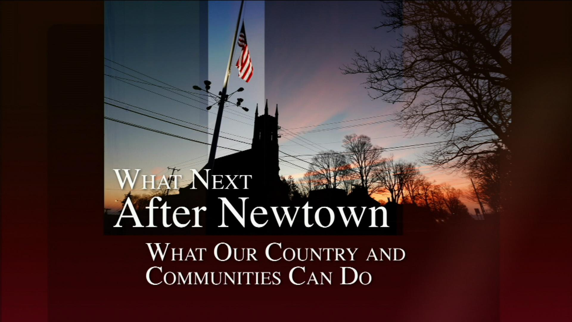 What Next After Newtown image