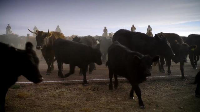Hanna Ranch | Promo