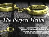 America Reframed | The Perfect Victim | Preview 2
