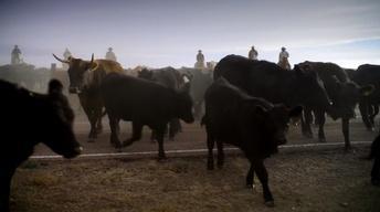 S3 Ep16: Hanna Ranch