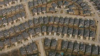Suburban Life
