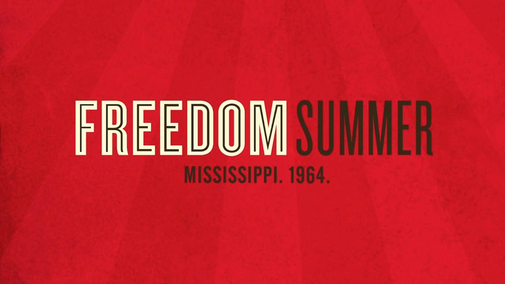 Freedom Summer Extended Preview image