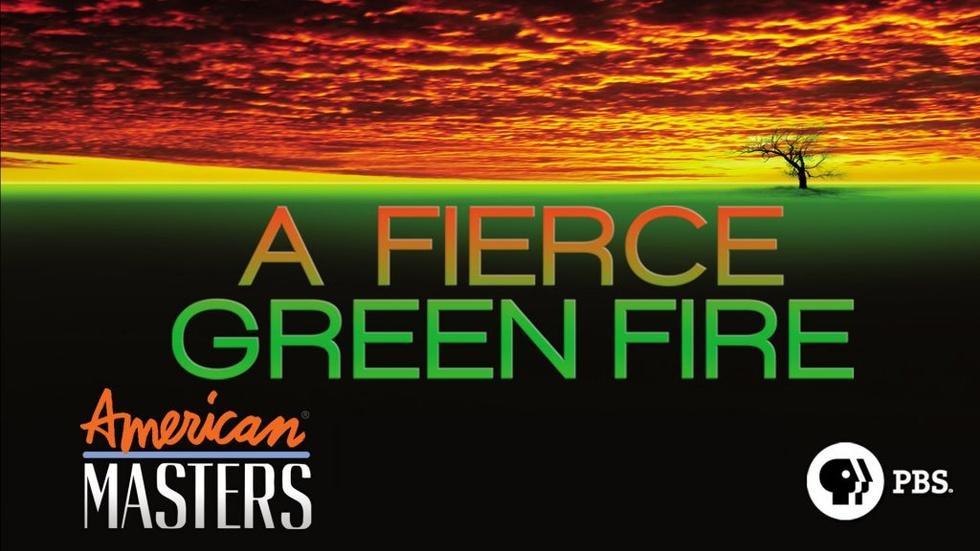 A Fierce Green Fire - Full Film image