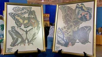 S16 Ep16: Appraisal: Seguy Butterfly Prints, ca. 1928