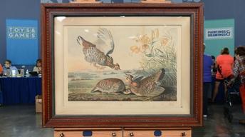 S20 Ep3: Appraisal: 1860 J. J. Audubon Chromolithograph