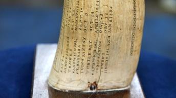 "Appraisal: 1831 ""Timoleon"" Scrimshaw Tooth"