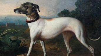 Appraisal: 19th-Century British Dog Portrait