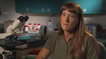 Bonus Interview: Dr. Terry Roth, Cincinnati Zoo