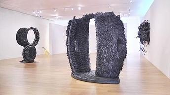 DeCordova Museum: Chakaia Booker: In and Out