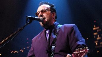 "Elvis Costello  ""Sulphur to Sugarcane"""