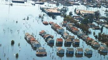 The Journal: Katrina Revisited