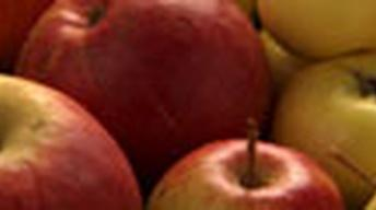 Apples - Web Extra with Michael Pollan