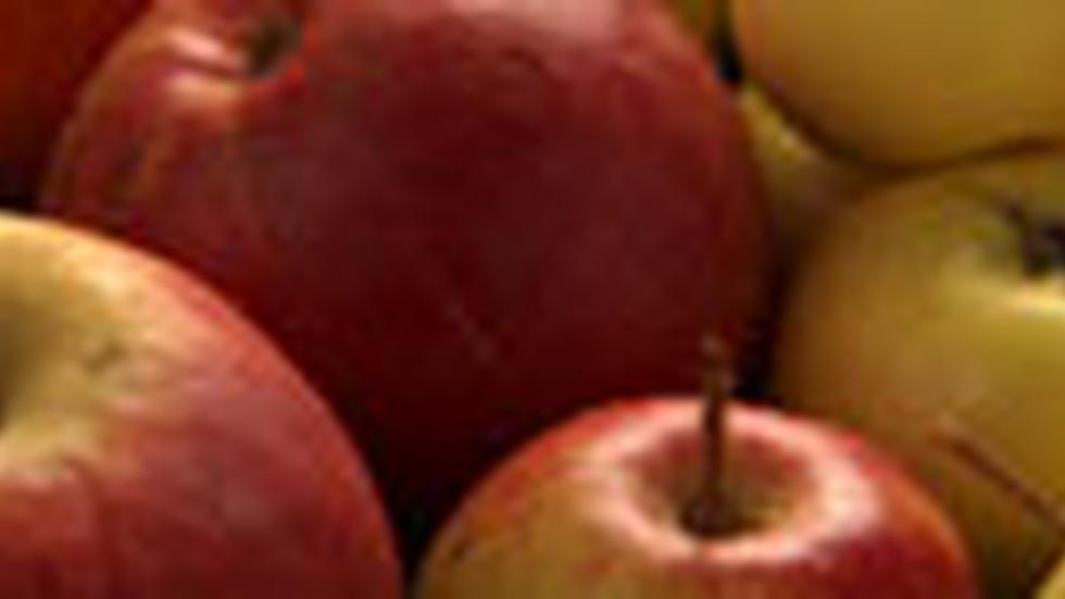 Apples - Web Extra with Michael Pollan image