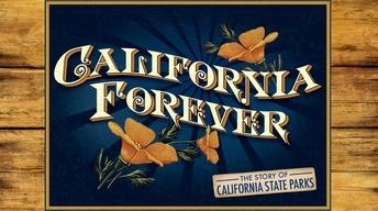California Forever: Episode One