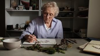 S8 Ep2: Mary Merkel-Hess on the prairie garden as inspiratio