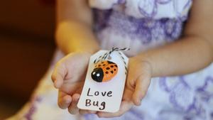 Salt Dough Love Bug Valentine's Cards