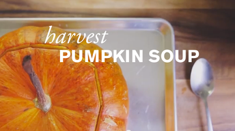 Harvest Pumpkin Soup image