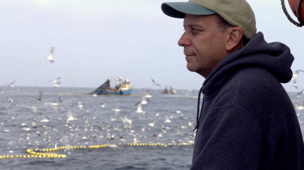 """S35 Ep15: """"The Fish on My Plate"""" - Preview image"""