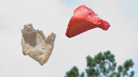 Plastic Bag image