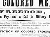 Genealogy Roadshow | Troops of Color