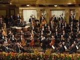 Great Performances | From Vienna: The New Year's Celebration 2014