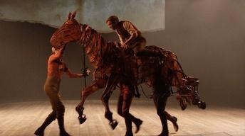 """""""War Horse"""" Scene"""